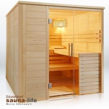 sauna glass element 200 x 210. Black Bedroom Furniture Sets. Home Design Ideas